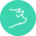 Sector cárnico-avícola