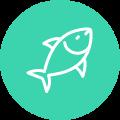 Sector pesca