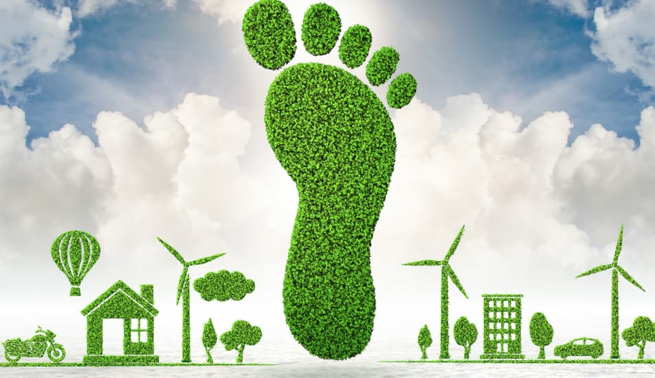 How can we reduce the carbon footprint in the logistics area of our company?